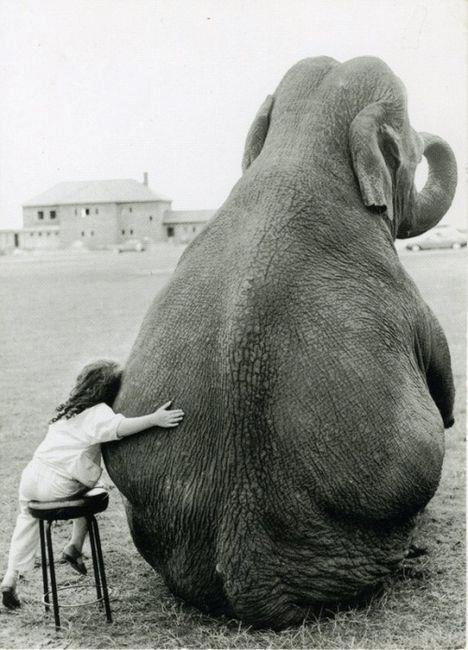 girl-hugging-elephant